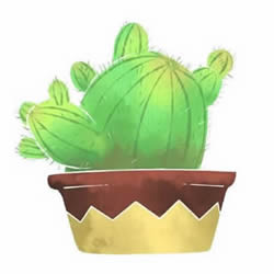 How to Draw a Pot of Succulents Step by Step