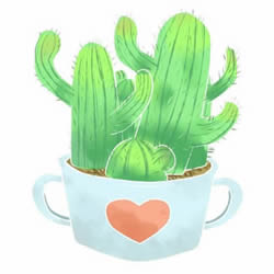 How to Draw a Pot of Cactuses Step by Step