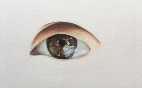 How to Draw a Eye with Colored Pencils Step by Step