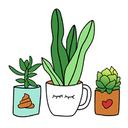 How to Draw Cute Succulents Step by Step