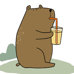 How to Draw a Bear Drinking a Drink Step by Step