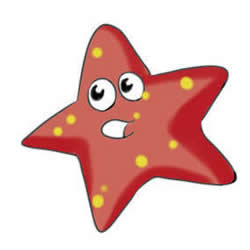 How to Draw Two Colored Starfish Step by Step