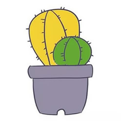 How to Draw Cactuses Grown in Pot Step by Step