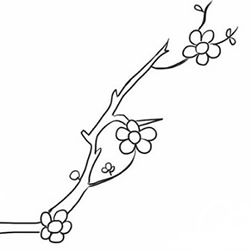 How to Draw Plum Blossoms Step by Step for Beginners
