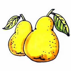 How to Draw Delicious Pears Step by Step for Kids