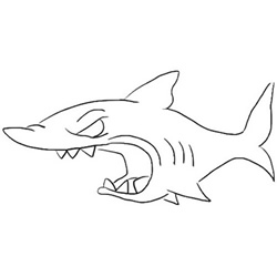 How to Draw an Angry Shark Step by Step for Beginners