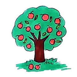 How to Draw an Apple Tree Covered with Apples Step by Step for Kids