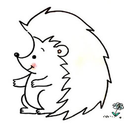 How to Draw a Cute Cartoon Hedgehog Step by Step for Kids