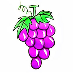 How to Draw a Bunch of Purple Grapes Step by Step for Kids