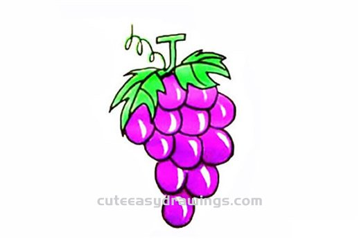How To Draw A Bunch Of Purple Grapes Step By Step For Kids Cute Easy Drawings