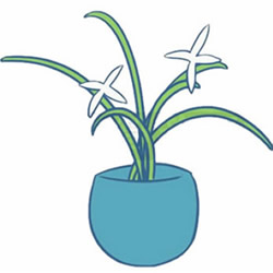 How to Draw a Pot of Chinese Orchids Step by Step for Kids