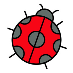 How to Simple Draw a Ladybug Step by Step for Kids