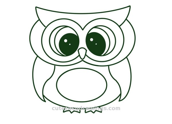 How to Draw a Cute and Beautiful Owl Step by Step for Kids