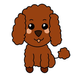 How to Draw a Poodle Dog Easy Step by Step for Kids