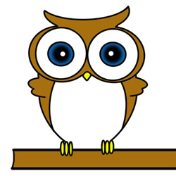 How to Draw an Owl on a Tree Easy Step by Step for Kids