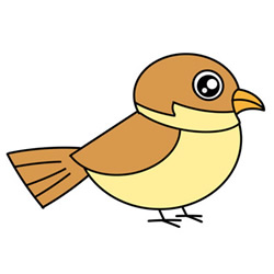 How to Draw a Cute Sparrow Easy Step by Step for Kids