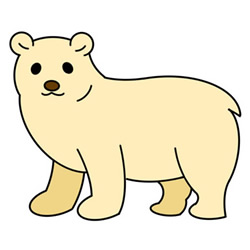 How to Draw a Polar Bear Easy Step by Step for Kids