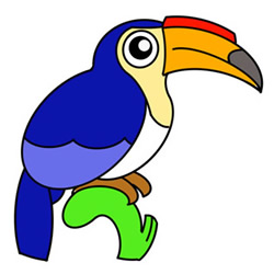 How to Draw a Hornbill Bird Easy Step by Step for Kids