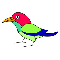 How to Draw a Cute Sunbird Easy Step by Step for Kids