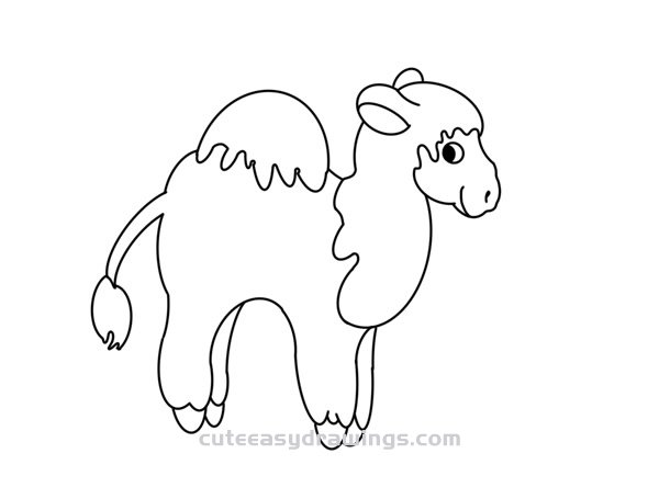 How to Draw a Dromedary Easy Step by Step for Kids