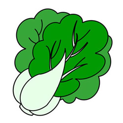 How to Draw a Cole Vegetable Easy Step by Step for Kids