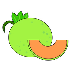 How to Draw a Cantaloupe Easy Step by Step for Kids