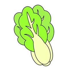 How to Draw a Colored Chinese Cabbage Easy Step by Step for Kids