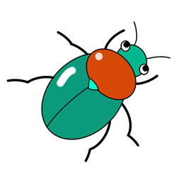 How to Draw a Beautiful Beetle Easy Step by Step for Kids