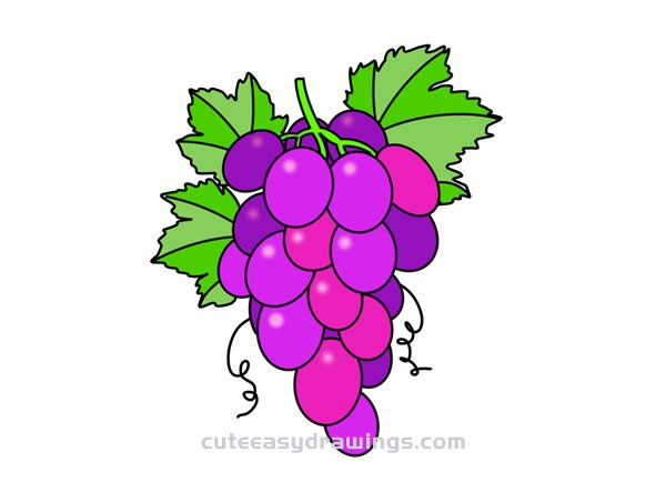 How To Draw A Bunch Of Grapes Easy Step By Step For Kids Cute Easy Drawings