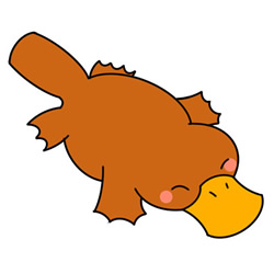 How to Draw a Cute Platypus Easy Step by Step for Kids