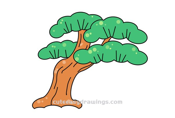 How to Draw a Beautiful Pine Tree Easy Step by Step for Kids