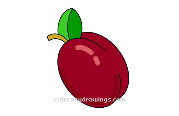 How to Draw a Colored Plum Easy Step by Step for Kids