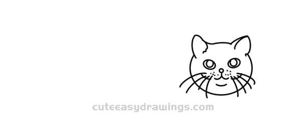 How to Draw a Orange Cat Easy Step by Step for Kids