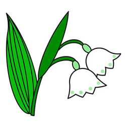 How to Draw a Lily of the Valley Easy Step by Step for Kids