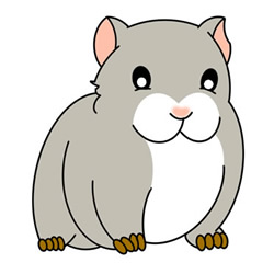 How to Draw a Gray Guinea Pig Easy Step by Step for Kids