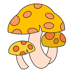How to Draw Cute Mushrooms Easy Step by Step for Kids