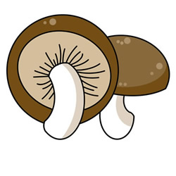 How to Draw a Shiitake Mushroom Easy Step by Step for Kids