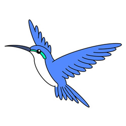 How to Draw a Flying Hummingbird Easy Step by Step for Kids