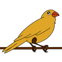 How to Draw a Sparrow on the Wire Easy Step by Step for Kids