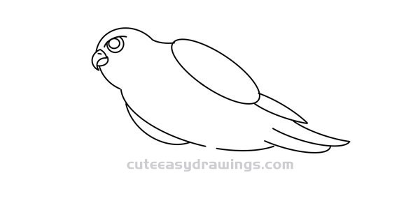 How to Draw a Falcon on a Tree Easy Step by Step for Kids