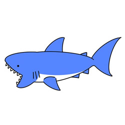 How to Draw a Shark Easy for Kids