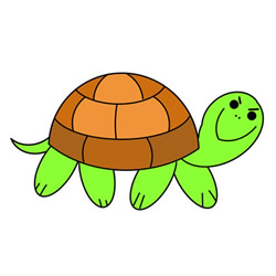 How to Draw a Cartoon Tortoise Easy Step by Step for Kids