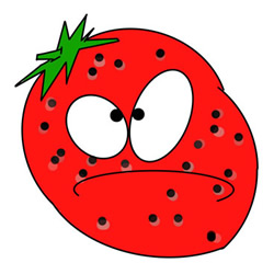 Cartoon Strawberry Drawing Step by Step for Kids