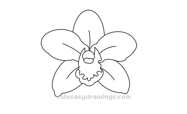 How to Draw a Cymbidium Orchid Flower Tutorial Easy for Kids