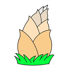 How to Draw a Bamboo Shoot Easy Step by Step for Kids