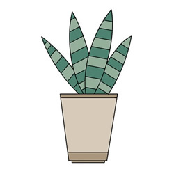 How to Draw Sansevieria Easy Step by Step for Kids