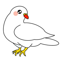 How to Draw a White Dove on the Ground Step by Step for Kids