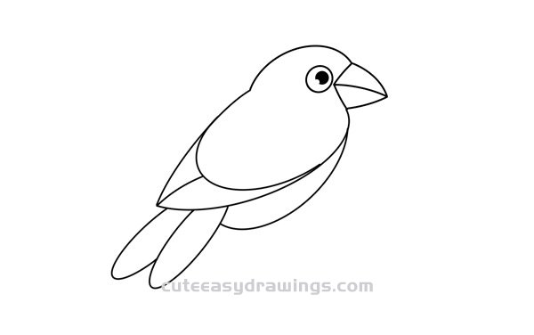 How to Draw a Red-Billed Parrot Easy Step by Step for Kids