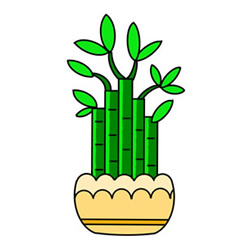 How to Draw a Lucky Bamboo Bonsai for Kids