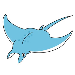 How to Draw a Manta Ray Easy Step by Step for Kids